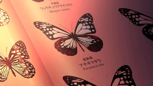 鮮やかなアニメで魅了する京都学園大学のCM